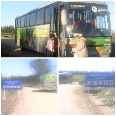 20091006015859-omnibus.jpg