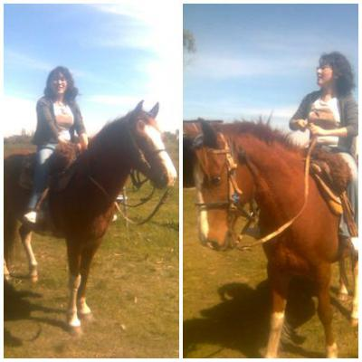 20091006025633-caballos.jpg